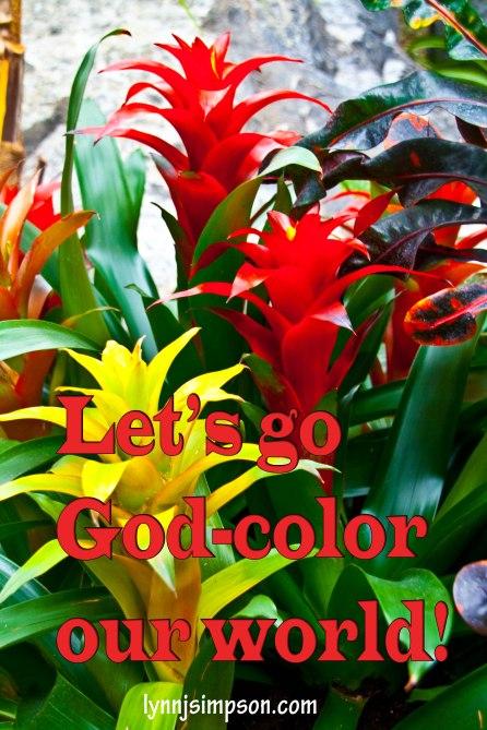 God Colours)