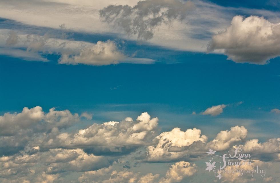 sky (35 of 1)