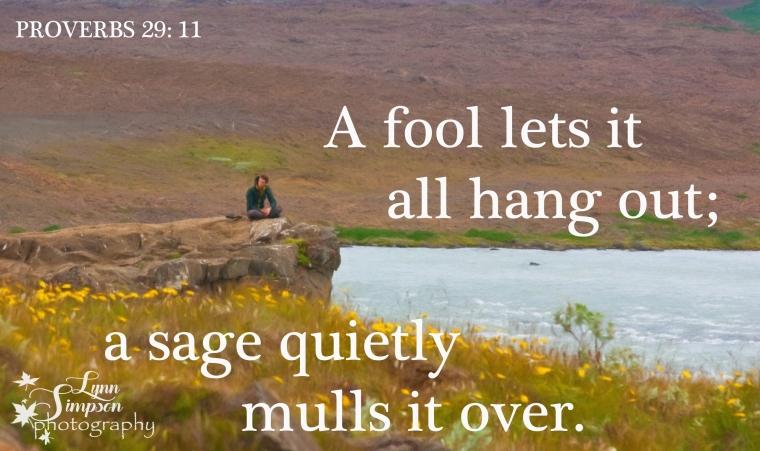 proverbs-topaz